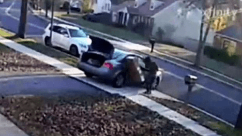 Watch: Maryland Package Thief Trips Over Big-Screen TV, Can't Jam It …